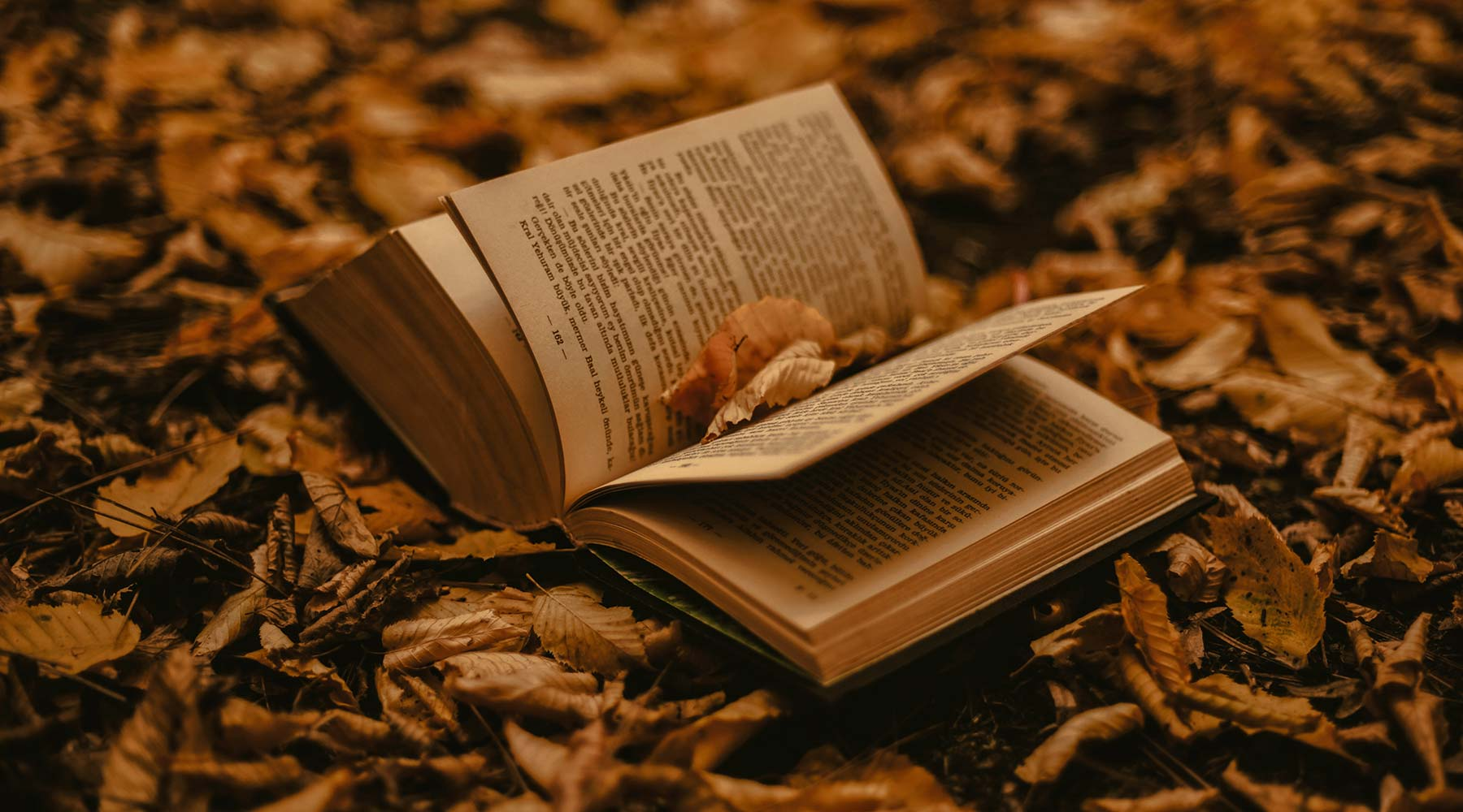 Book on leaves