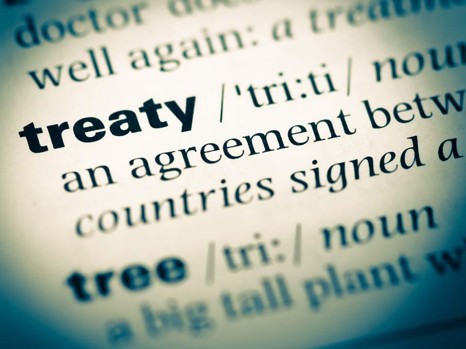 Treaty image